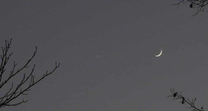 moon_dream.jpg